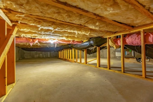 Everything You Need to Know About Basement Insulation